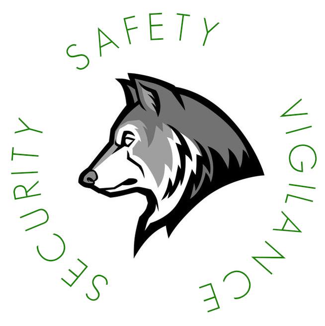 LISD safety