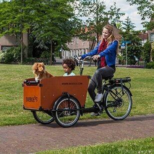 Babboe Big E Electric Cargo Bike